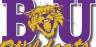 Bethel TN Wildcats