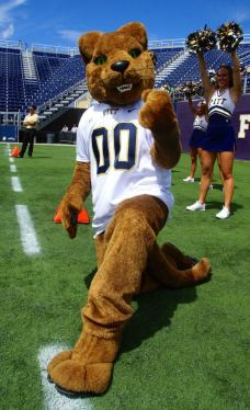 The Pitt Panther was ready for action as Pittsburgh took on Florida Atlantic on Sept. 13, 2014. (RoadTripSports photo by Kendall Webb)