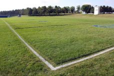 Spartan Field, the home of Minnesota State Community and Technical College. (RoadTripSports photo by Matthew Postins)