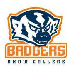 Snow Badgers